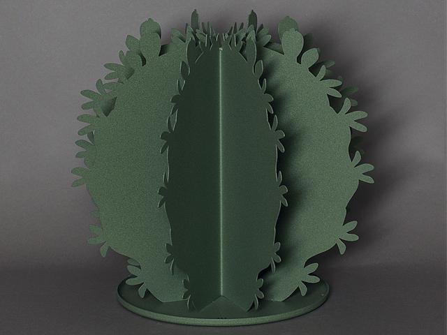 ArtieMestieri cactus tondo salvia 1 thumb